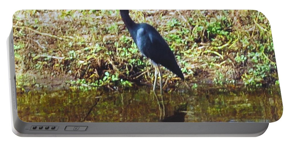 Matlacha Portable Battery Charger featuring the photograph Blue Heron by Robert Floyd