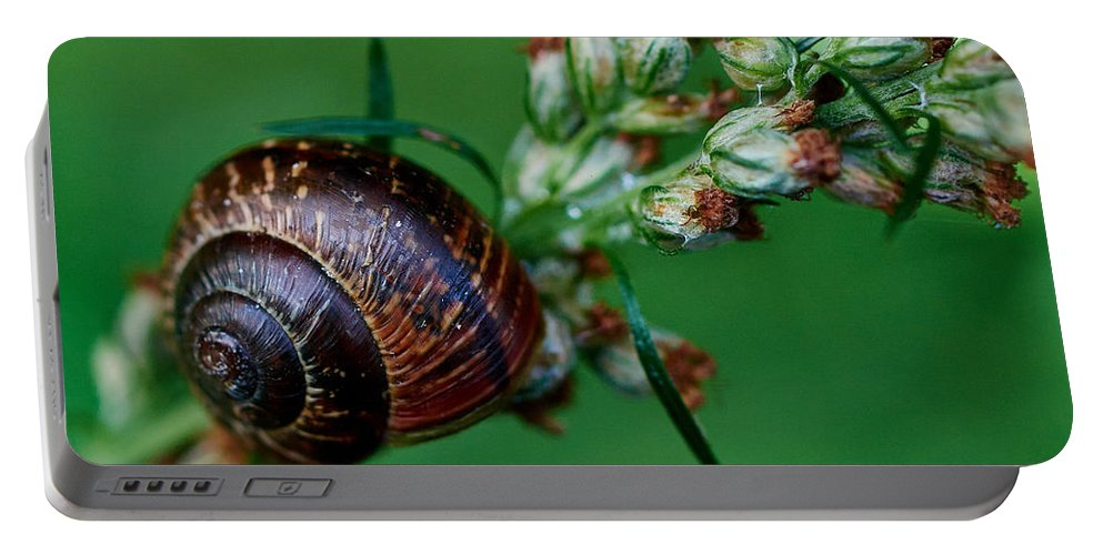 Finland Portable Battery Charger featuring the photograph Copse Snail by Jouko Lehto