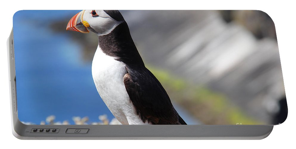 Puffin Portable Battery Charger featuring the photograph Puffin by Traci Law