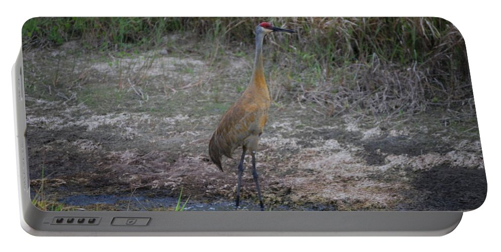 On Guard Portable Battery Charger featuring the photograph Sandhill Crane by Robert Floyd