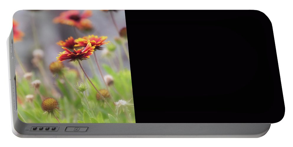 Flowers Portable Battery Charger featuring the photograph Simplicity by Saija Lehtonen