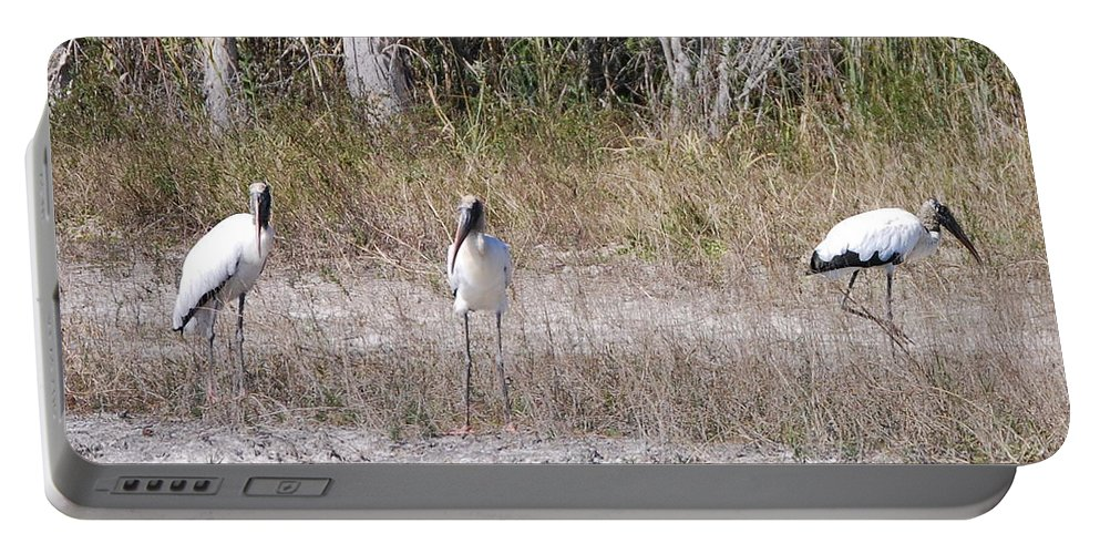 You Guys Keep A Look Out. Portable Battery Charger featuring the photograph Wood Storks by Robert Floyd