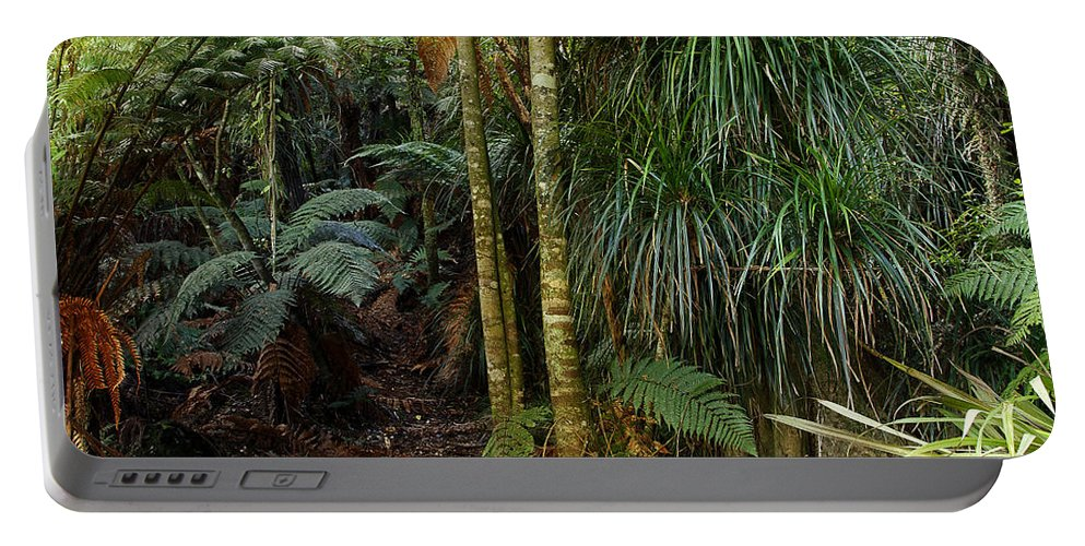 Forest Portable Battery Charger featuring the photograph Jungle by Les Cunliffe