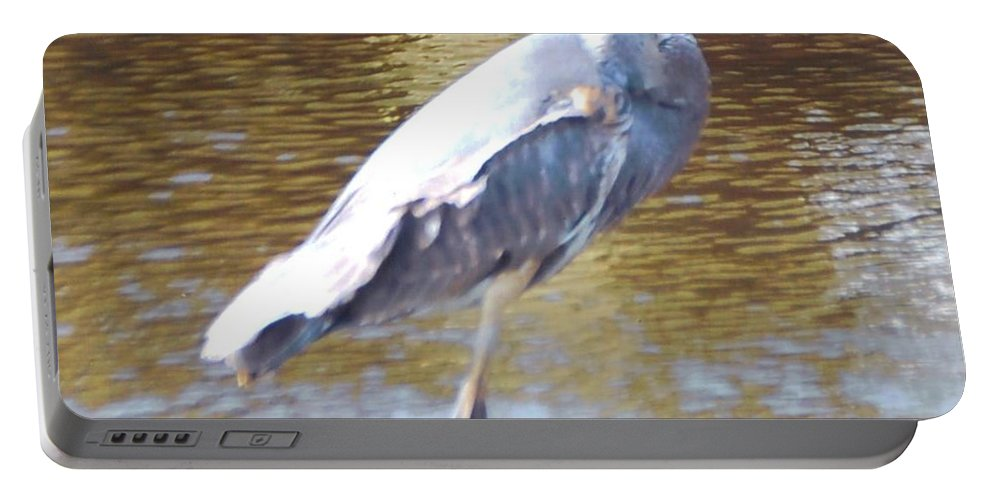 North Ft.myers Portable Battery Charger featuring the photograph Blue Heron by Robert Floyd