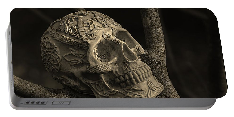 Usa Portable Battery Charger featuring the photograph Celtic Skulls Symbolic Pathway To The Other World by LeeAnn McLaneGoetz McLaneGoetzStudioLLCcom