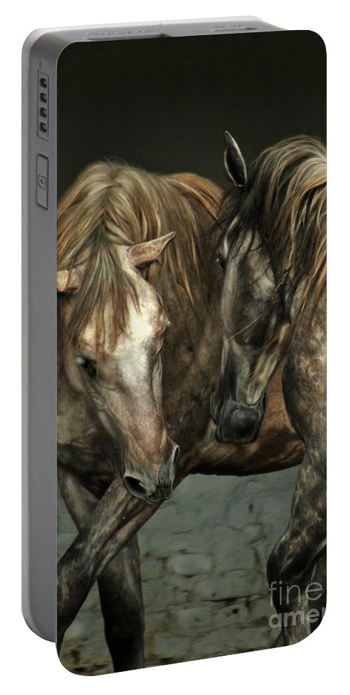 Horse Portable Battery Charger featuring the photograph Flamenco by Angel Ciesniarska