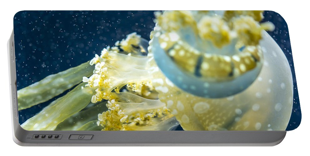 Animal Portable Battery Charger featuring the photograph Jelly Fish by Jijo George