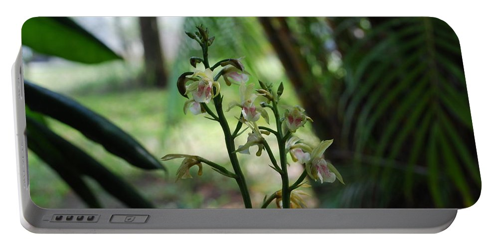 Rare Portable Battery Charger featuring the photograph Orchid by Robert Floyd