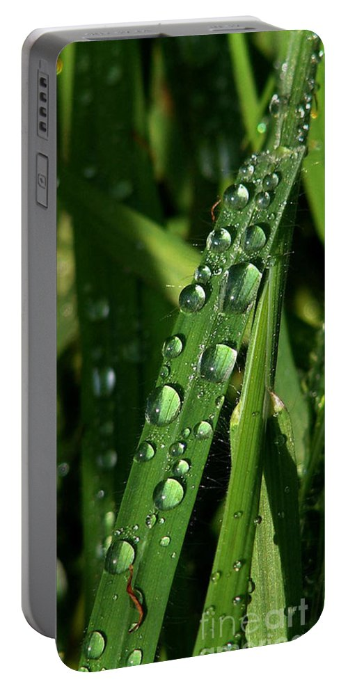 Rain Portable Battery Charger featuring the photograph Raindrops by Carol Lynch
