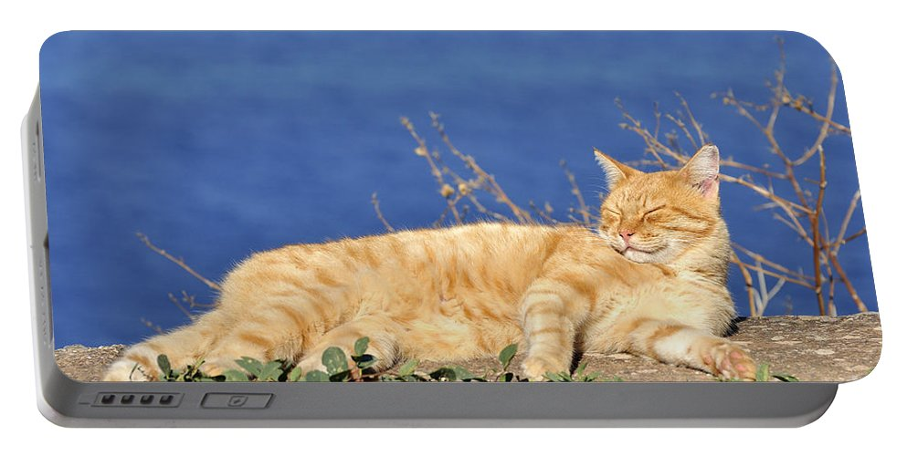 Cat; Cats; Feline; Tabby; Animal; Sleep; Sleeping; Rest; Resting; Free; Alone; Greece; Hellas; Greek; Hellenic; Hydra; Argosaronic; Saronic; Gulf; Islands; Holidays; Island; Vacation; Travel; Trip; Voyage; Journey; Tourism; Touristic; Red; Sea; Sunshine Portable Battery Charger featuring the photograph Cat In Hydra Island by George Atsametakis
