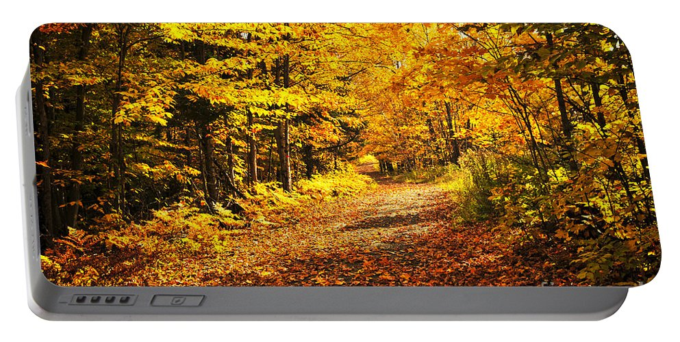 Fall Portable Battery Charger featuring the photograph Fall Forest by Elena Elisseeva
