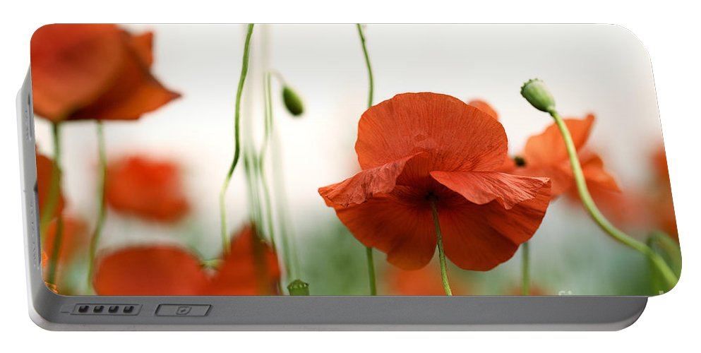 Poppy Portable Battery Charger featuring the photograph Red Poppy Flowers by Nailia Schwarz