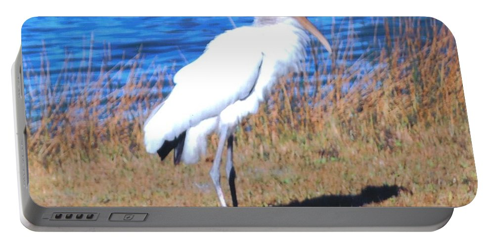 Standing Tall At Lakes Park In Ft.myers Portable Battery Charger featuring the photograph Woodstork by Robert Floyd
