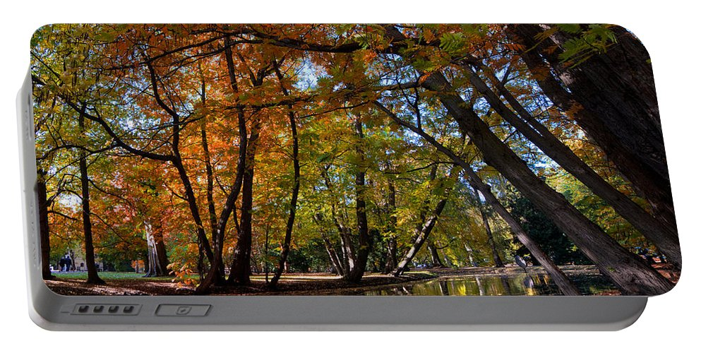 Fall Portable Battery Charger featuring the photograph Alley With Falling Leaves In Fall Park by Michal Bednarek