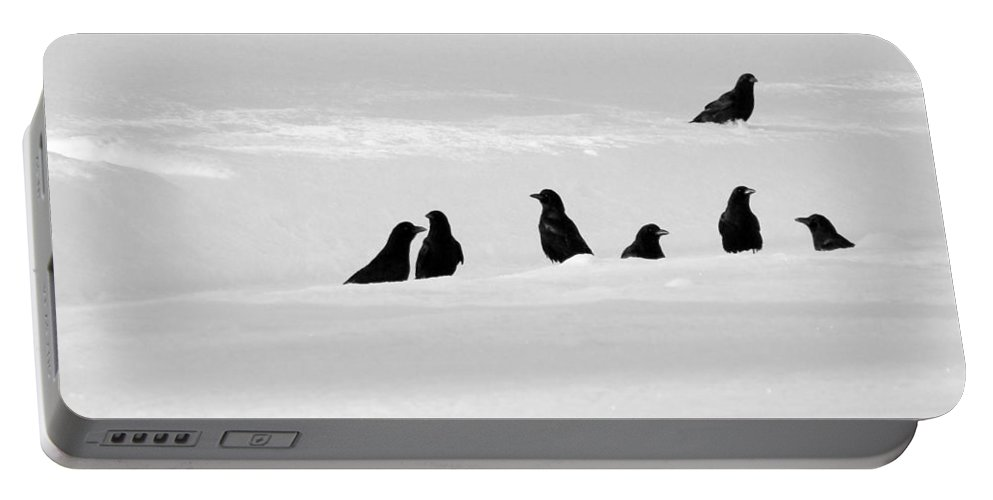 Crows In Snow Portable Battery Charger featuring the photograph 7 Snow Crows by Gothicrow Images