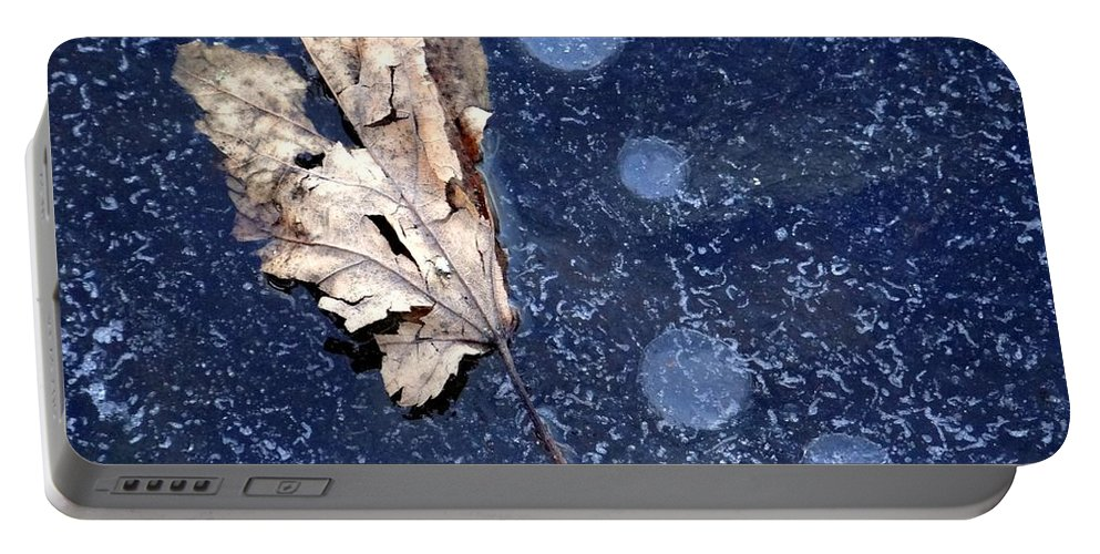 Leaf Portable Battery Charger featuring the photograph Untitled by Ed Weidman