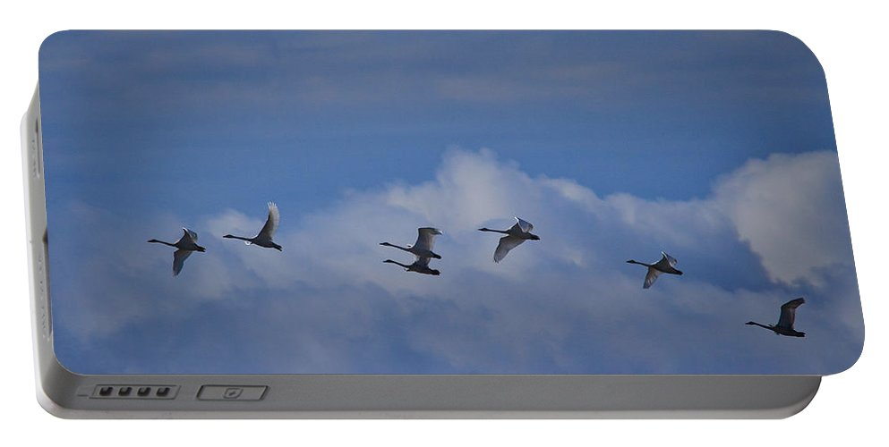 Finland Portable Battery Charger featuring the photograph Whooper Swans by Jouko Lehto
