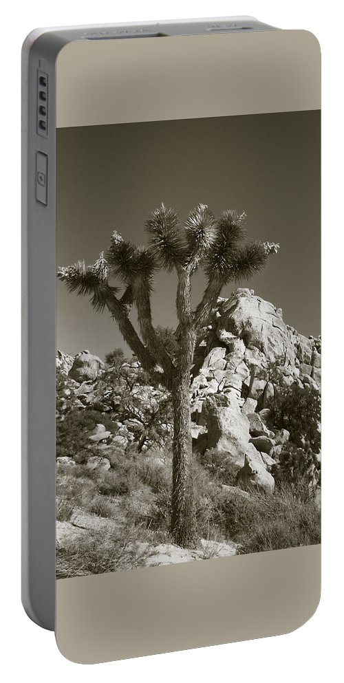 Joshua Tree Portable Battery Charger featuring the photograph Joshua Tree National Park Landscape No 7 In Sepia by Ben and Raisa Gertsberg