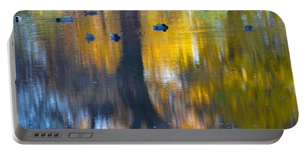 Ducks Portable Battery Charger featuring the photograph 8 Ducks On Pond by Deprise Brescia