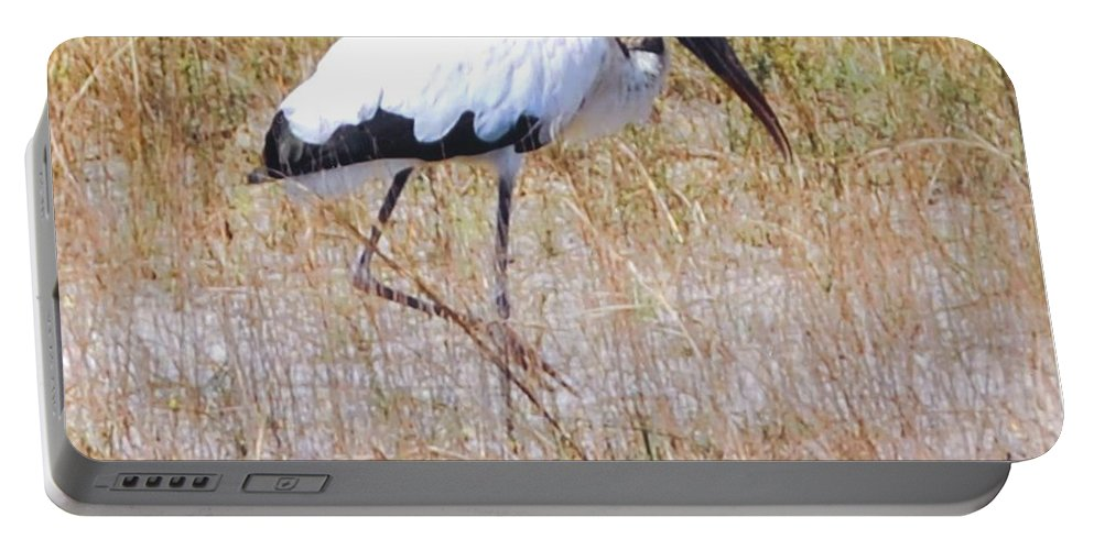 Wading For Food Portable Battery Charger featuring the photograph Wood Stork by Robert Floyd