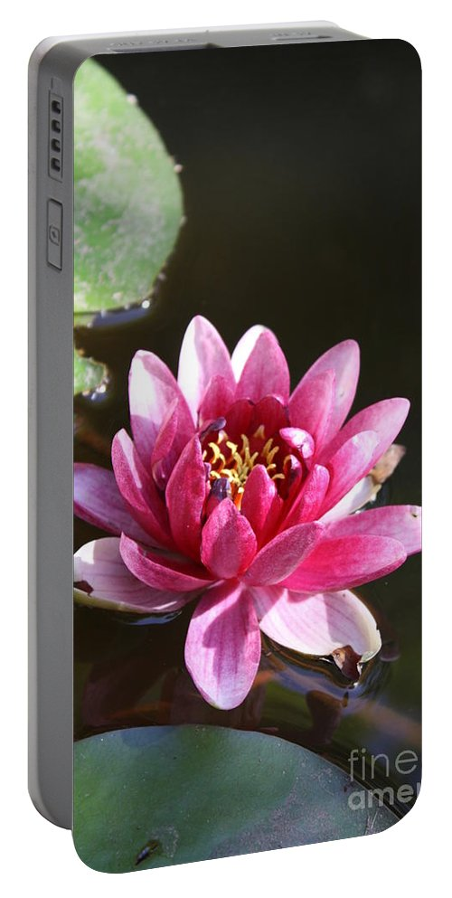 Waterlily Portable Battery Charger featuring the photograph Water Lily by Irina Davis