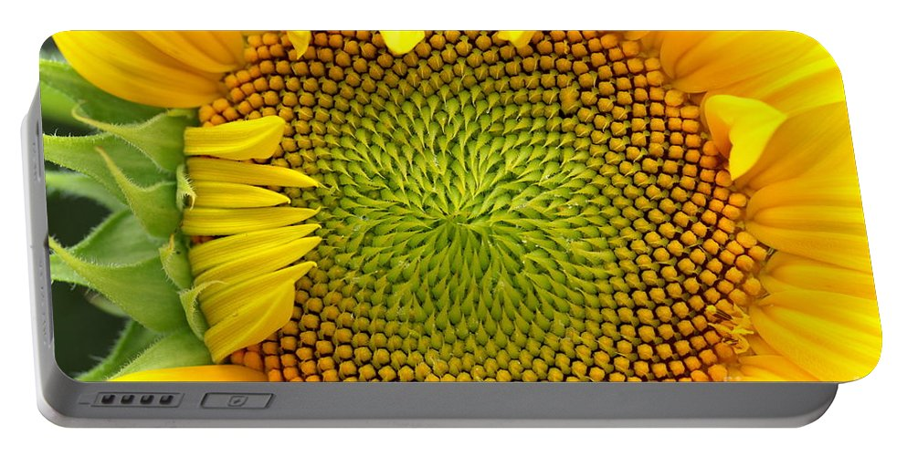 Sun Portable Battery Charger featuring the photograph 90 Percent by Kenny Glotfelty