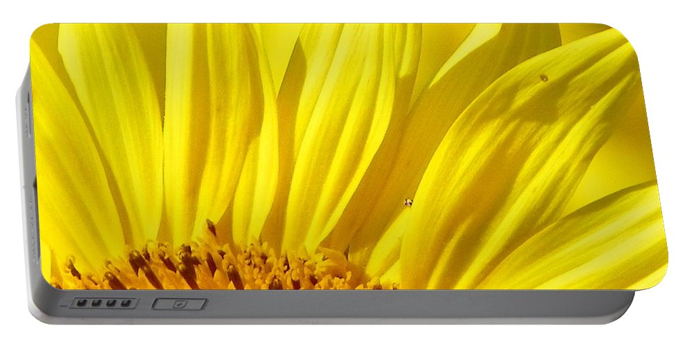 #923 D718 Colby Farm 2012.jpg Portable Battery Charger featuring the photograph #923 D718 You Are My Sunshine. Sunflower On Colby Farm by Robin Lee Mccarthy Photography