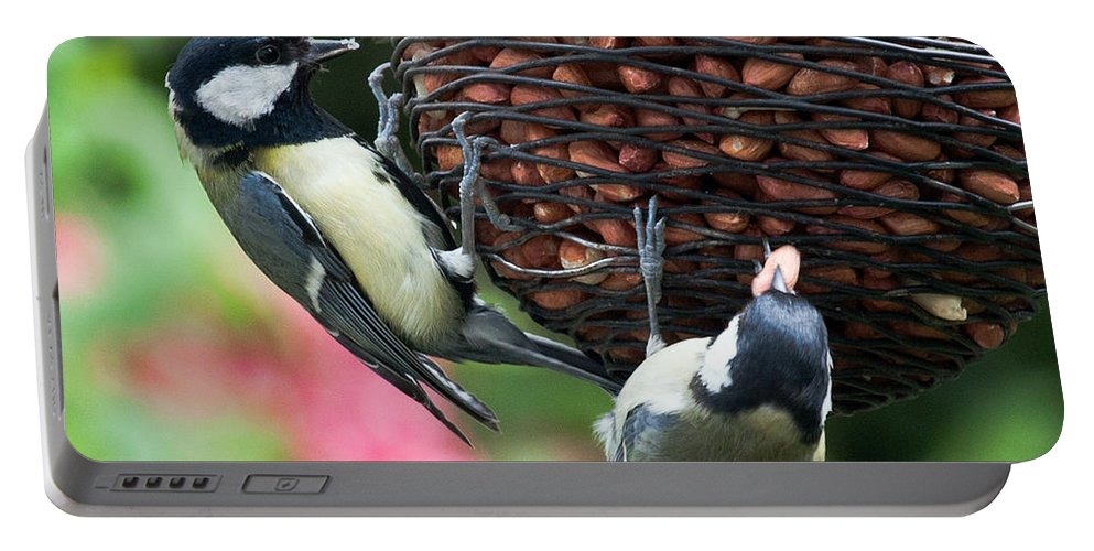 Bird Portable Battery Charger featuring the photograph A Beautiful Pair Of Tits by Terri Waters