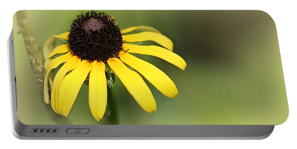 Art Portable Battery Charger featuring the photograph A Black Eyed Susan by Sabrina L Ryan