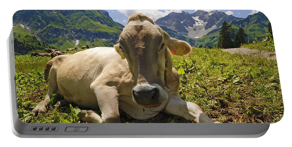 Mountain Portable Battery Charger featuring the photograph A Calf In The Mountains by Chevy Fleet