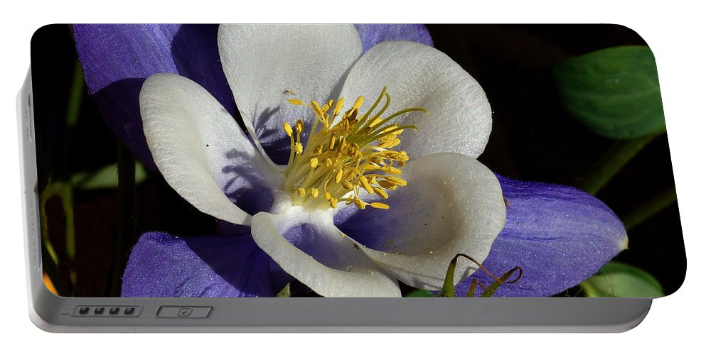 Artwork Portable Battery Charger featuring the photograph A Columbine by Ernie Echols