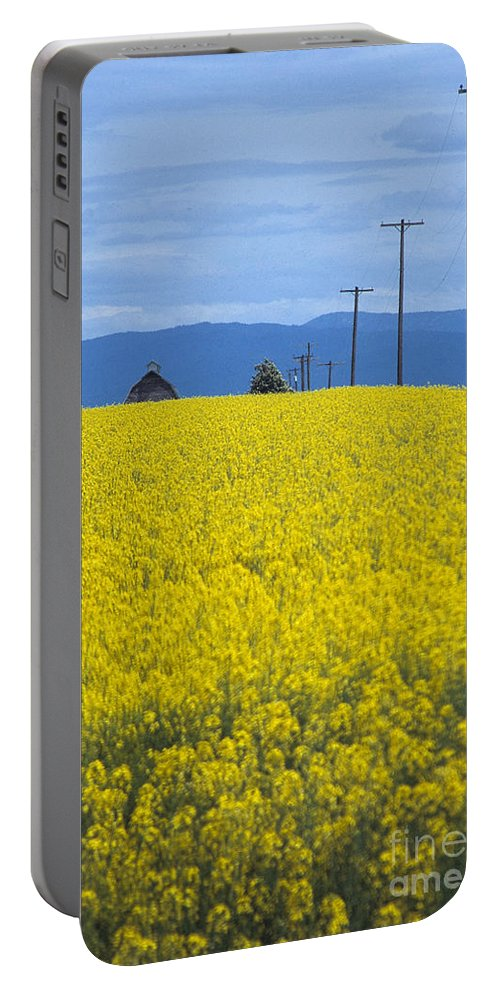 Canola Portable Battery Charger featuring the photograph A Country Mile by Sharon Elliott