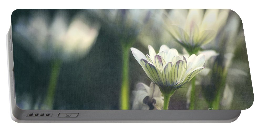 Photo Portable Battery Charger featuring the photograph A Day In August by Jutta Maria Pusl
