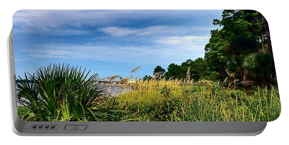 Florida Portable Battery Charger featuring the photograph A Drive With A View by Debra Forand
