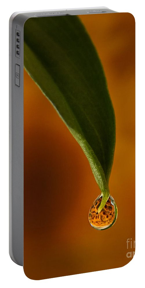 Sunflower Portable Battery Charger featuring the photograph A Drop Of Sunshine by Susan Candelario