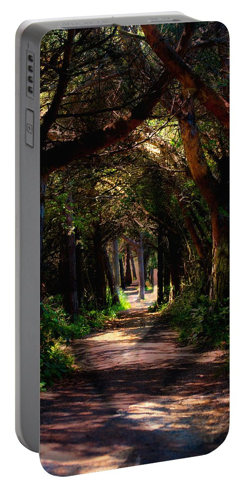 Forest Portable Battery Charger featuring the photograph A Forest Path -dungeness Spit - Sequim Washington by Marie Jamieson