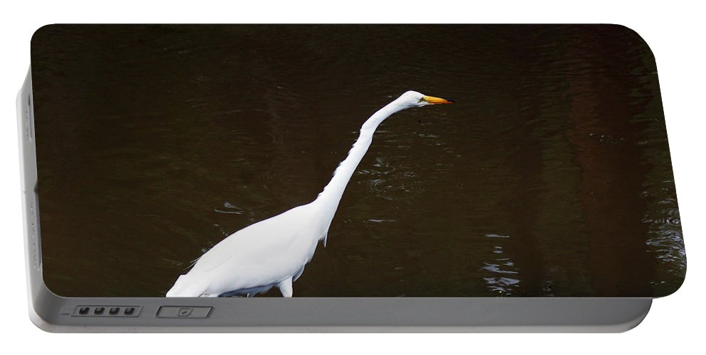 The Great Egret Portable Battery Charger featuring the photograph A Great Egret On Hilton Head Island by Kim Pate