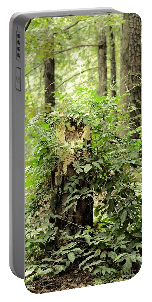 A Leprechaun's Hideout Portable Battery Charger featuring the photograph A Leprechaun's Hideout by Maria Urso