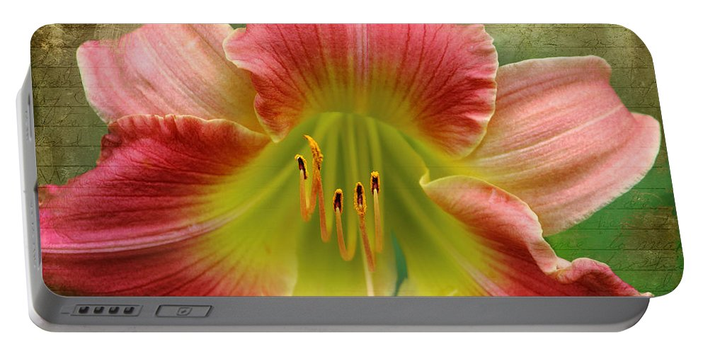 Daylily Portable Battery Charger featuring the photograph A Lily A Day by Karen Beasley