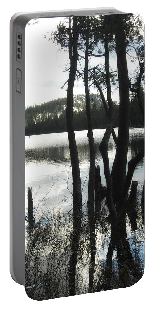 Lake Portable Battery Charger featuring the photograph A Little Blue by Donna Blackhall