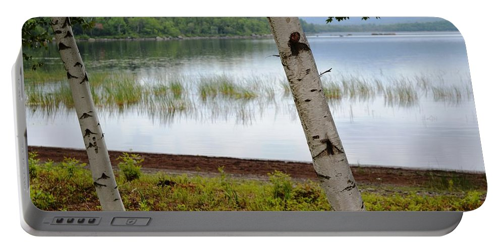 White Portable Battery Charger featuring the photograph A Maine White Birch Pairing by Lena Hatch