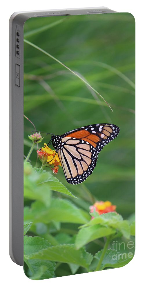 Photography Portable Battery Charger featuring the photograph A Monarch Butterfly At Rest by Jackie Farnsworth