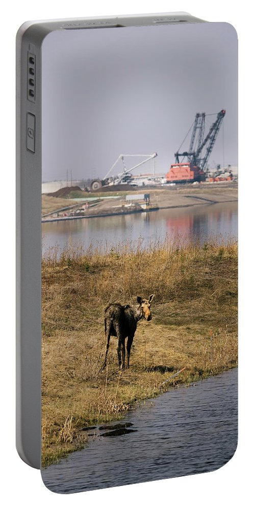 Alberta Portable Battery Charger featuring the photograph A Moose Walks On The On Reclaimed Land by Todd Korol