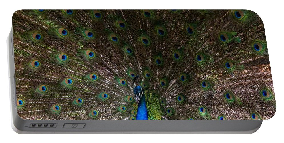 Feathers Portable Battery Charger featuring the photograph A Peacock's Feathers by Kathleen Odenthal