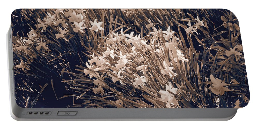 Daffodils Portable Battery Charger featuring the photograph Clusters Of Daffodils In Sepia by Donna Haggerty