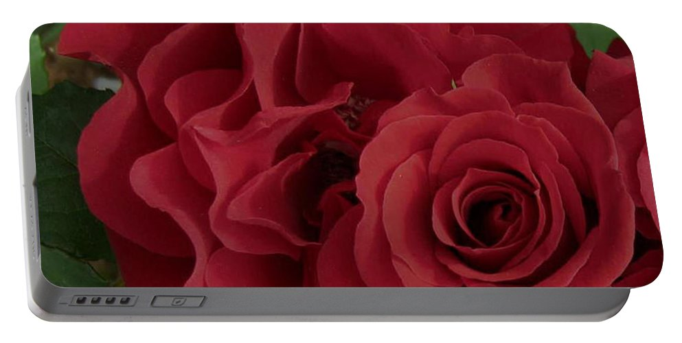Flowers Portable Battery Charger featuring the photograph A Rose Within A Rose by Siera Anthony