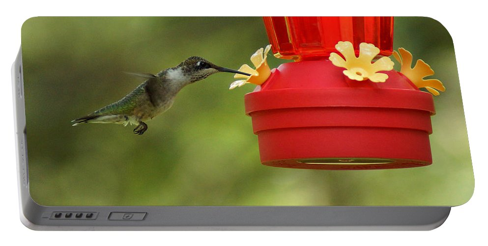A Ruby-throated Hummingbird Portable Battery Charger featuring the photograph A Ruby-throated Hummingbird by Kim Pate