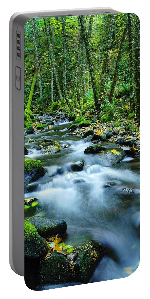 Rivers Portable Battery Charger featuring the photograph A Small Song In The Big Beauty by Jeff Swan