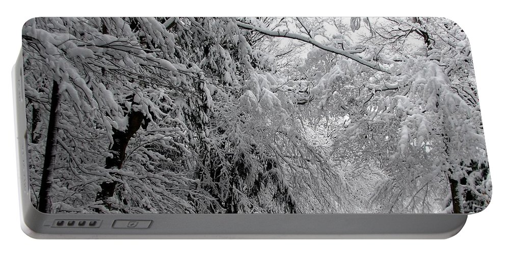 Snow Portable Battery Charger featuring the photograph A Snowy Drive Through Chestnut Ridge Park by Rose Santuci-Sofranko