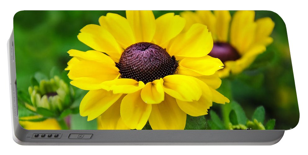 Flowers Portable Battery Charger featuring the photograph A Splash Of Sunshine by Susie Peek